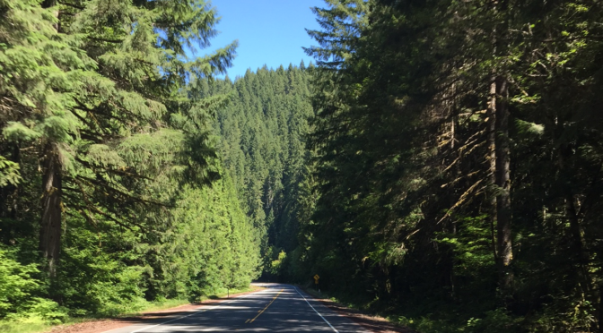 Fainting goats, a humiliation of llamas, and discovering the joys of Bend, Oregon