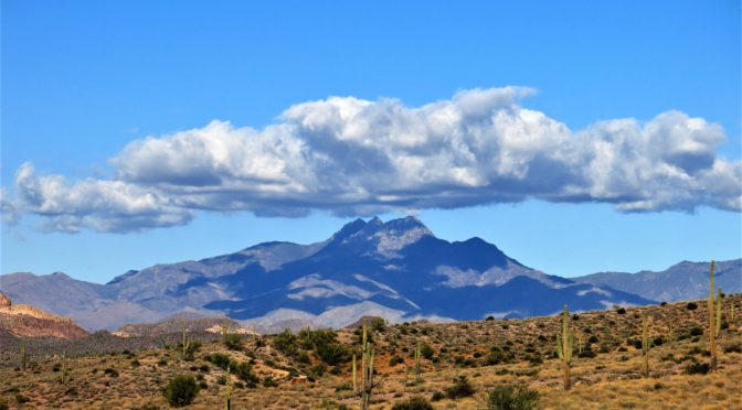 Back in Arizona:  Petrified Forest National Park and Lost Dutchman State Park